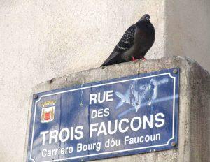 Rue des Trois Faucons