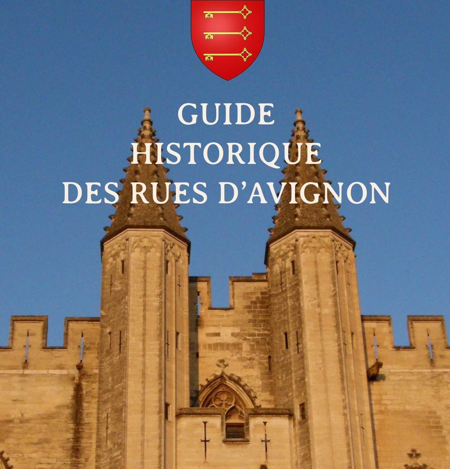 Avignon Guide Historique